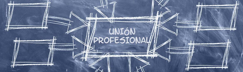 Esencial colegial: la importancia de las organizaciones colegiales