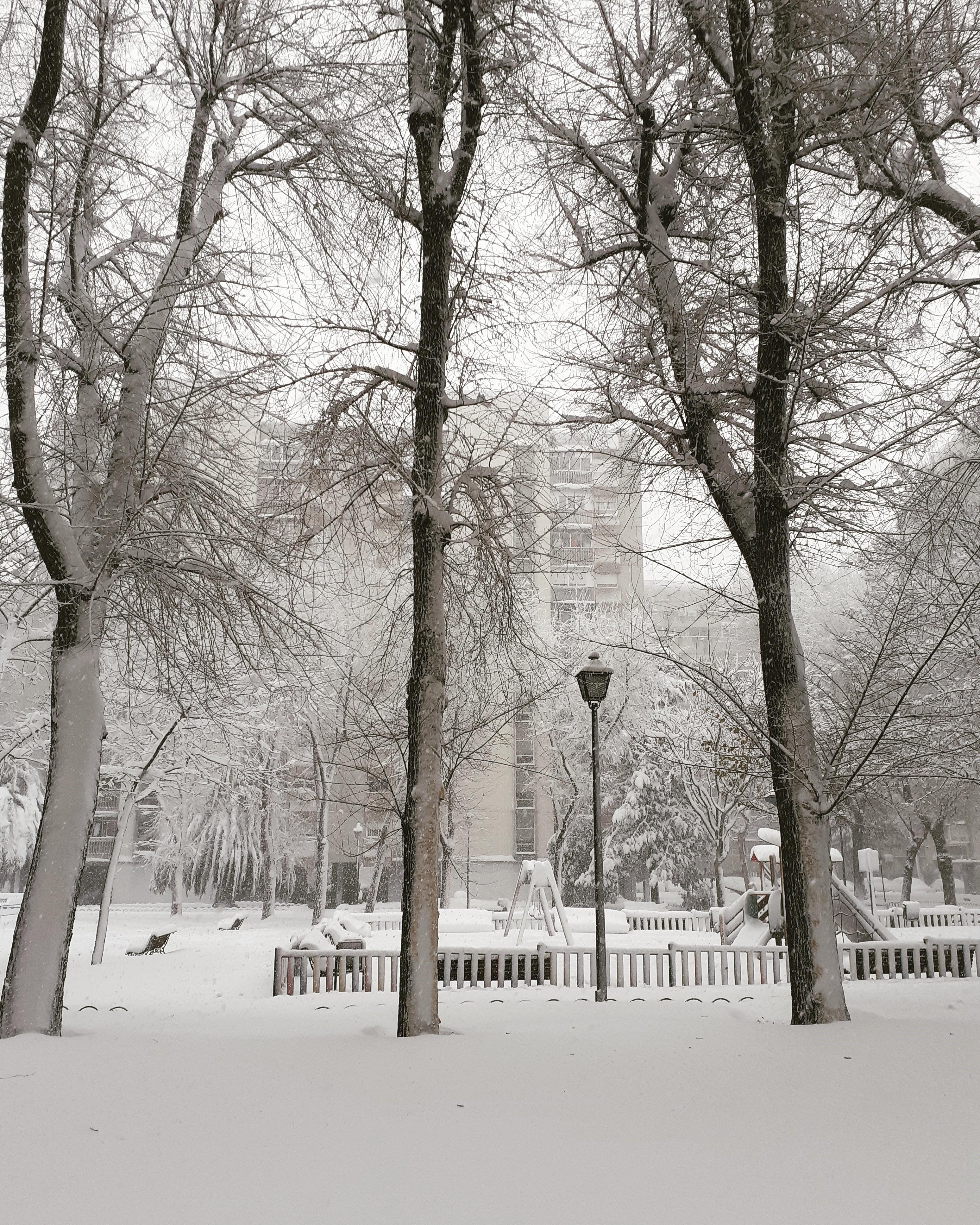 """Soluciones de la ingeniería ante la tormenta de nieve """"Filomena"""""""